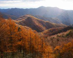 半月山展望台からの紅葉