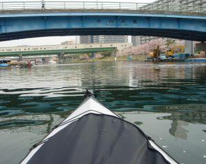 旧中川を漕を漕ぎだしてすぐ。
