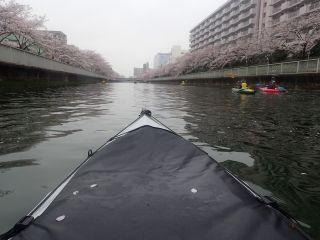 帰路の大横川