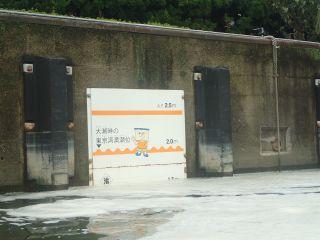 扇橋閘門内、満潮の時の水位